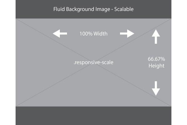 اندازه گذاری بخش های مختلف سایت